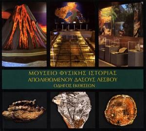 Οδηγός εκθέσεων του Μουσείου Φυσικής Ιστορίας Απολιθωμένου Δάσους Λέσβου
