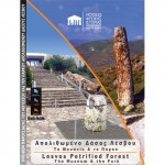 DVD-ROM Παρουσίασης του Μουσείου Φυσικής Ιστορίας Απολιθωμένου Δάσους Λέσβου