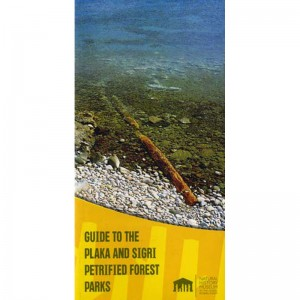 Guide to the Plaka and Sigri Petrified Forest Parks
