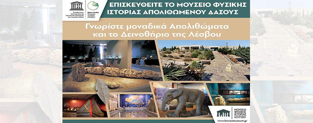 Επισκευθείτε το Μουσείο Φυσικής Ιστορίας Απολιθωμένου Δάσους Λέσβου