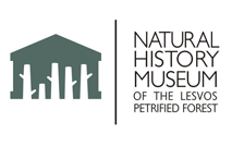 Visit the website of the the Lesvos Petrified Forest Museum