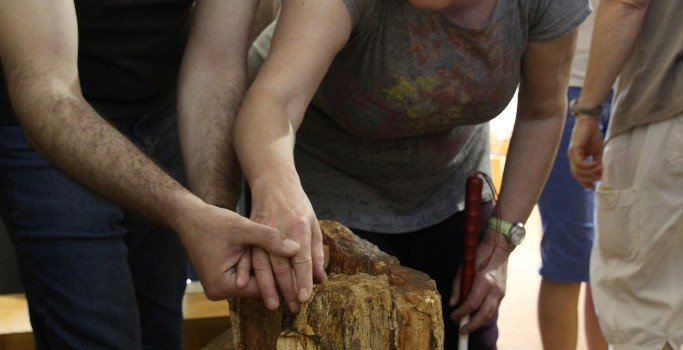 Γνωριμία με το Απολιθωμένο Δάσος από επισκέπτες με προβλήματα όρασης