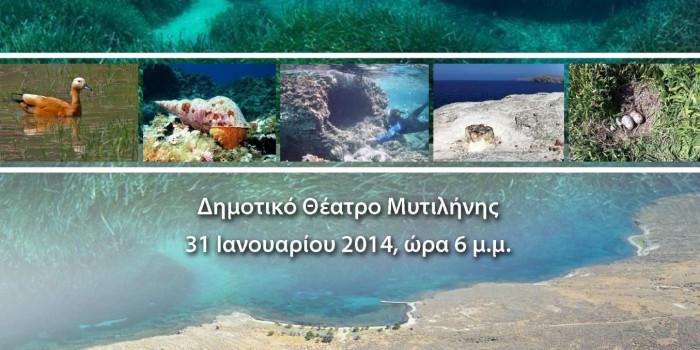 ΗΜΕΡΙΔΑ «Ένα θαλάσσιο Μουσείο γεννιέται»