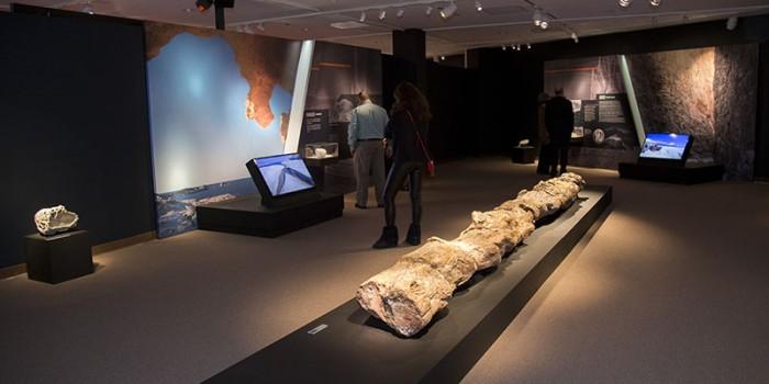 Το AIΓΑΙΟ στo Σικάγο – Εγκαινιάσθηκε η μεγάλη έκθεση στο National Hellenic Museum