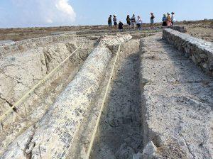 Πάρκο Νησιώπης-Γιγαντιαίος κατακείμενος απολιθωμένος κορμός