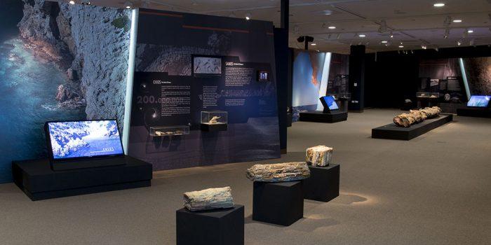 Ολοκληρώθηκε η παρουσίαση της μεγάλης έκθεσης ΑΙΓΑΙΟΝ  Η Γέννηση ενός Aρχιπελάγους στο ΣΙΚΑΓΟ των ΗΠΑ
