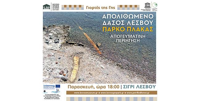 ΠΑΡΑΣΚΕΥΗ 13 ΙΟΥΛΙΟΥ 2018</br>Περιήγηση στο Πάρκο Πλάκας Σιγρίου</br>Απογευματινός περίπατος και επιστημονική ενημέρωση