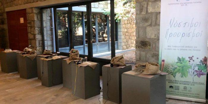 Βιωματική – Διαδραστική Έκθεση  «Νόστιμοι Προορισμοί»</br>στο Μουσείο Φυσικής Ιστορίας Απολιθωμένου Δάσους Λέσβου