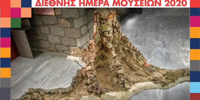 ΔΙΕΘΝHΣ ΗΜΕΡΑ ΜΟΥΣΕΙΩΝ 2020 Ξεκίνησε η νέα ψηφιακή δράση του Μουσείου Φυσικής  Ιστορίας Απολιθωμένου Δάσους Λέσβου</br>ΑΘΕΑΤΑ ΤΕΚΜΗΡΙΑ