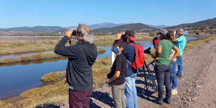 Συνεχίζονται οι δράσεις ορνιθοπαρατήρησης του Κέντρου Περιβαλλοντικής Ενημέρωσης Καλλονής<br>το Σαββατοκύριακο 24-25 Οκτωβρίου 2020<br>Με επιτυχία οι εξορμήσεις παρατήρησης πουλιών στις Αλυκές Καλλονής για δεύτερο Σαββατοκύριακο