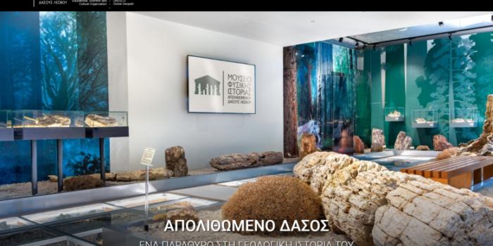 Ψηφιακό παράθυρο στο Απολιθωμένο Δάσος<br>Νέα Ιστοσελίδα Μουσείου Φυσικής Ιστορίας Απολιθωμένου Δάσους Λέσβου