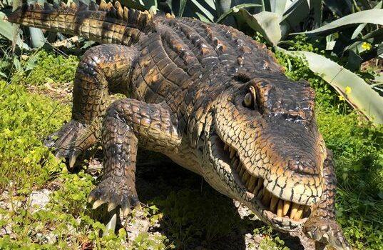 Σαββατοκύριακο στο Μουσείο Φυσικής Ιστορίας Απολιθωμένου Δάσους Λέσβου </br>Δράσεις για μικρούς και μεγάλους