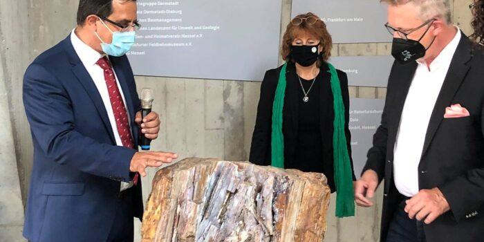 ΛΑΜΠΡΑ ΕΓΚΑΙΝΙΑ της μεγάλης έκθεσης του Απολιθωμένου Δάσους στη Φρανκφούρτη