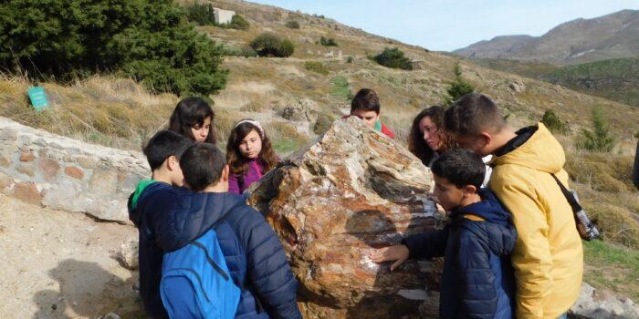 Ξεκίνησαν οι εκπαιδευτικές δράσεις στο Απολιθωμένο Δάσος Λέσβου