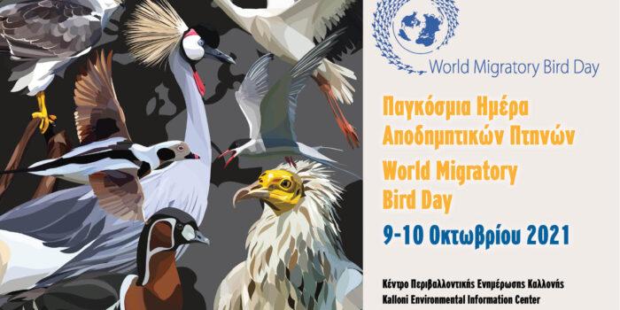 <strong>Φθινοπωρινή εξόρμηση παρατήρησης πουλιών</br>Παγκόσμια Ημέρα Μεταναστευτικών Πουλιών 2021!